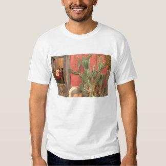 EUA, arizona, Tucson: Distrito histórico 2 de T-shirts