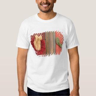 EUA, arizona, Tucson: Distrito histórico de Camiseta
