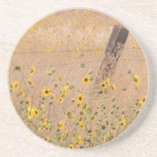 EUA, Califórnia, Adin. Cerca do arame farpado Porta Copos De Arenito