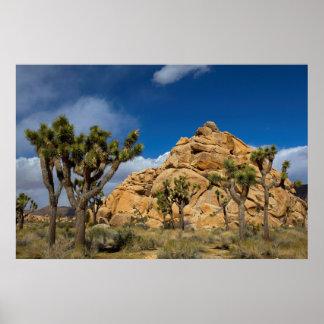 EUA, Califórnia, parque nacional de árvore de Poster
