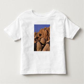 EUA, Califórnia, parque nacional de árvore de Tshirts