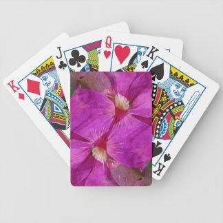 EUA, Colorado, Boulder. Montagem da flor do Baraloho De Pôquer