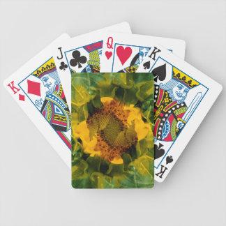 EUA, Colorado, Lafayette. Montagem do girassol Jogos De Cartas