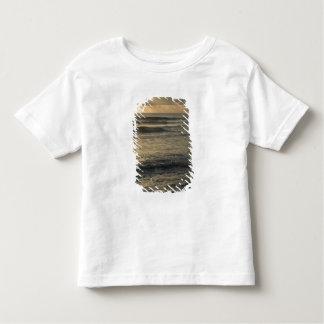 EUA, Havaí, Kauai, costa do sudoeste, perto de Camiseta Infantil