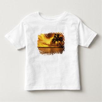 EUA, Havaí, Kauai, nascer do sol colorido em a T-shirts