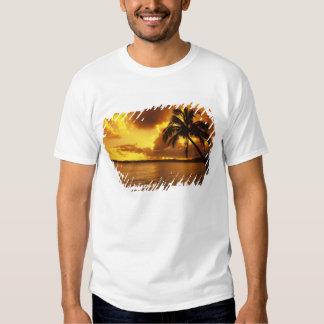 EUA, Havaí, Kauai, nascer do sol colorido em a Tshirt