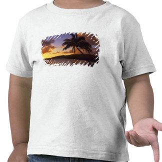 EUA, Havaí, Kauai, nascer do sol colorido em uns 2 Tshirts