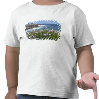 EUA, Havaí, Kauai, perto de Kapaa, noroeste T-shirts