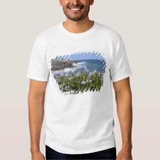 EUA, Havaí, Kauai, perto de Kapaa, noroeste T-shirt