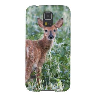 EUA, Kansas, cervo de Whitetail pequeno Capa Para Galaxy S5