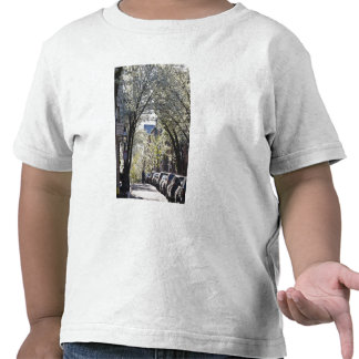 EUA, Massachusetts, Boston, monte de baliza Tshirt