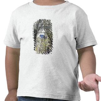 EUA, Massachusetts, Boston, monte de baliza T-shirt