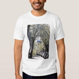 EUA, Massachusetts, Boston, monte de baliza Camiseta