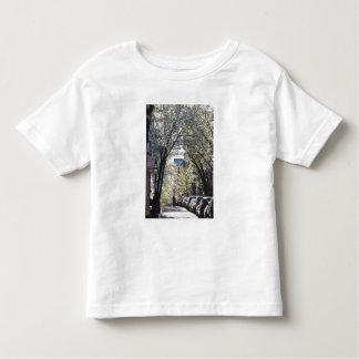 EUA, Massachusetts, Boston, monte de baliza T-shirts