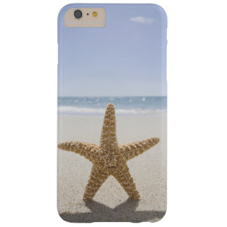 EUA, Massachusetts, Cape Cod, Nantucket, fim Capa Barely There Para iPhone 6 Plus