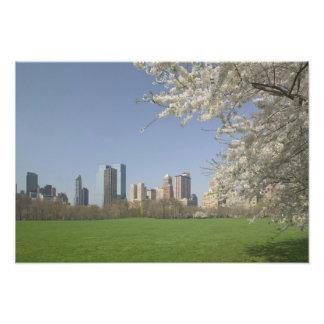 EUA, New York, Nova Iorque, Manhattan: 19 Impressão De Foto