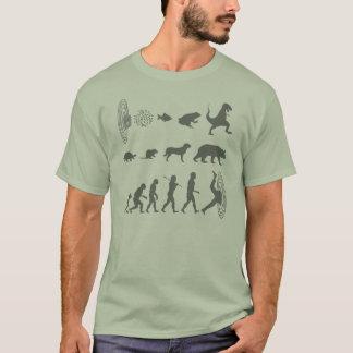 Evolução da camiseta contínua da espécie