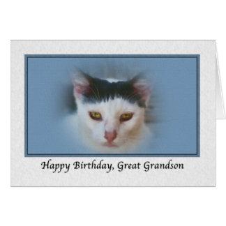 Excelente - cartão de aniversário do neto com gato