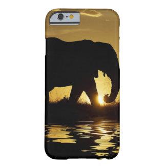 Exemplo do elefante do por do sol capa barely there para iPhone 6