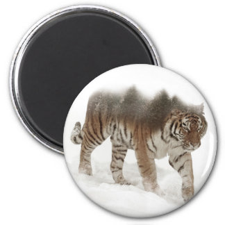Exposição-animais selvagens tigre-Tigre-dobro Imã