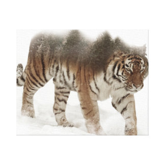 Exposição-animais selvagens tigre-Tigre-dobro Impressão Em Canvas