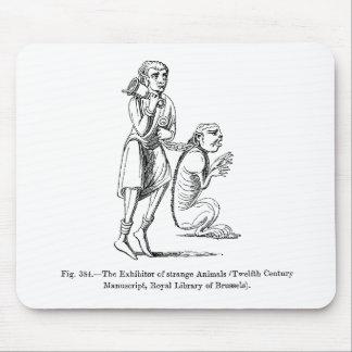 Expositor de animais estranhos mouse pad