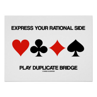 Expresse sua ponte lateral racional da duplicata pôster