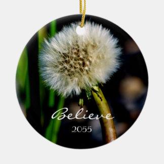 Faça um desejo, acredite-o, enfeites de natal do
