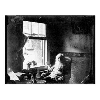 ❝Face de Whitman sempre ao St. Mickle de Sunshine❞ Cartão Postal