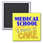 Faculdade de Medicina - pedaço de bolo Ima