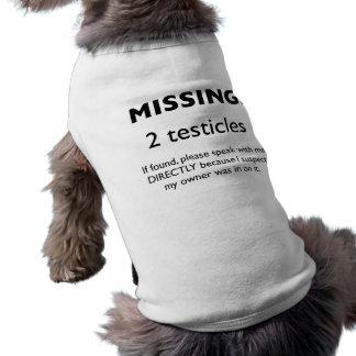 Falta: Camiseta de cão de 2 testículos