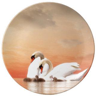 Família da cisne pratos de porcelana