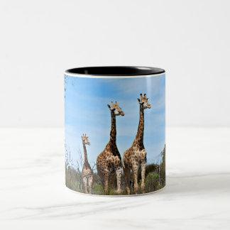 Família do girafa caneca de café em dois tons