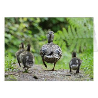 Família do pato cartão comemorativo