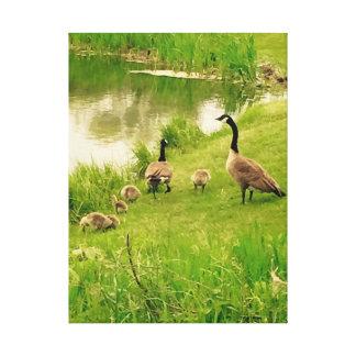 Família dos gansos pela lagoa impressão em tela