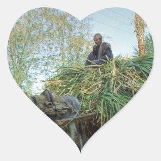 farmer-photo-18500-856601.jpg adesivos de corações