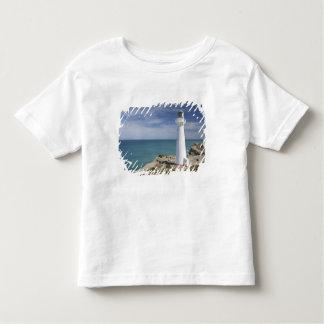 Farol do ponto do castelo, Castlepoint, Wairarapa, Camisetas