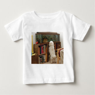 Fascínio Camisetas