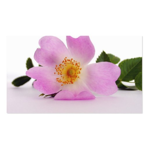 Favor roxo do marcador da flor (customizável) cartao de visita