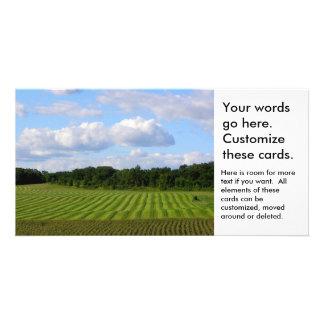 Fazendeiro listrado da terra do campo de fazenda cartão com foto
