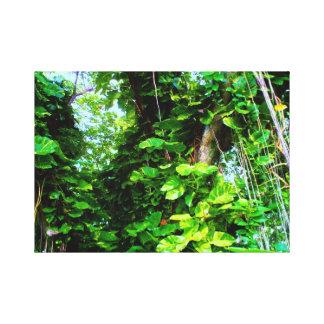 Febre de selva impressão de canvas esticadas