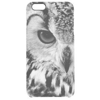 Feche acima do retrato da Eagle-coruja Capa Para iPhone 6 Plus Clear