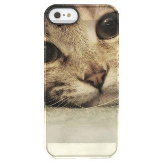Feche acima dos olhos de gatos de um gato malhado capa para iPhone SE/5/5s permafrost®