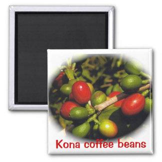 Feijões de café de Kona Imã