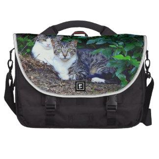 Felines selvagem mochila para notebook