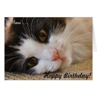 Feliz aniversario Card&Cat Cartão Comemorativo