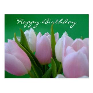 Feliz aniversario - cartão das tulipas