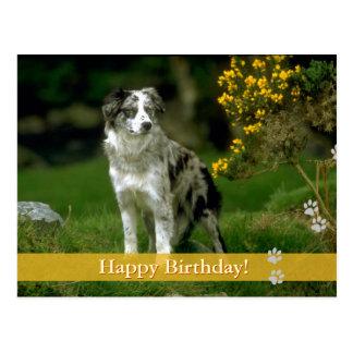 Feliz aniversario! - cartão do cão cartão postal
