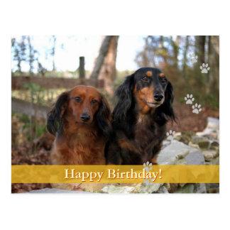 Feliz aniversario! - cartão do cão cartões postais