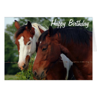 Feliz aniversario da fotografia dos cavalos cartao